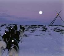 Husky safary on the Finnmarksvidda plateau with Engholm Husky