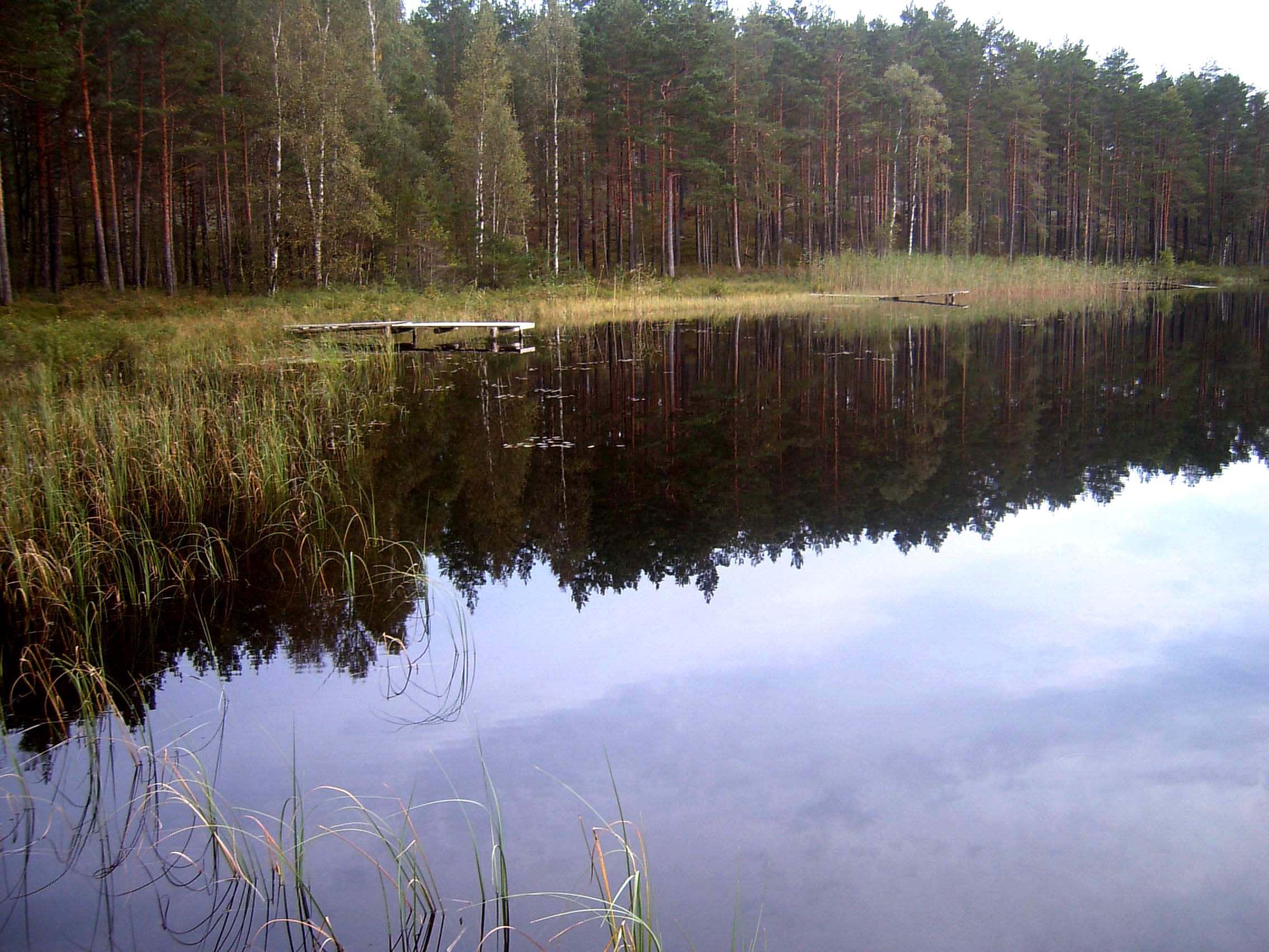 Alegöl, Stora Hammarsjöområdet
