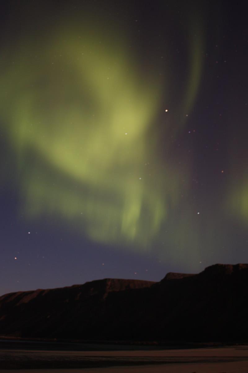 Northern Light - Nordic Safari