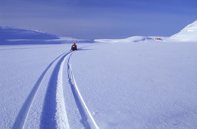 Schneemobil Safari Barentsee - Nordkyn - Finnland (4 dager) - Nordic Safari