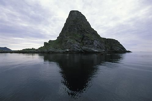 Gjesværstappan Nesting Cliffs, Nordkapp