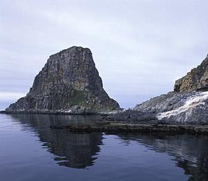 © Trym Ivar Bergsmo/Finnmark Reiseliv, Gjesværstappan Nesting Cliffs, Nordkapp