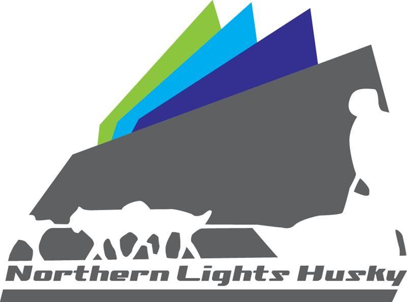 Northern Lights Husky