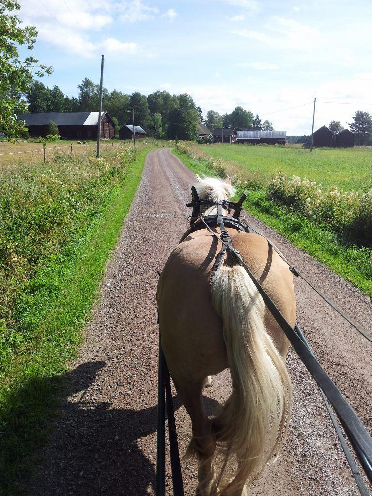 På tur med häst och vagn på Fallängetorp