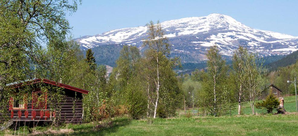 Åre Camping/Stugor