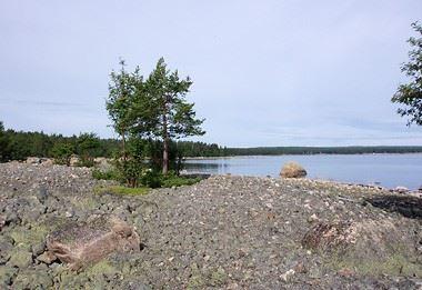 Källa: Länssyrelsen Gävleborg,  © Källa: Länssyrelsen Gävleborg, Gravfält på Gnarpsskaten, Sörfjärden