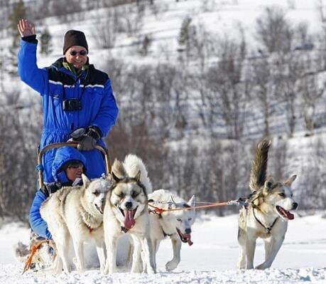 © Helge Stærk, Kirkenes Snowhotel Husky Safari 2 timer