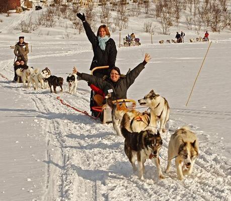 © Helge Stærk, Kirkenes Snowhotel Husky safari 2 hours