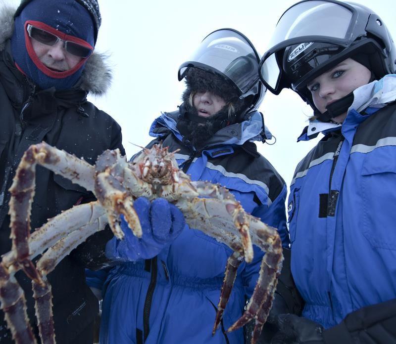 Kirkenes Snowhotel King crab safari and lunsj in fishermans house