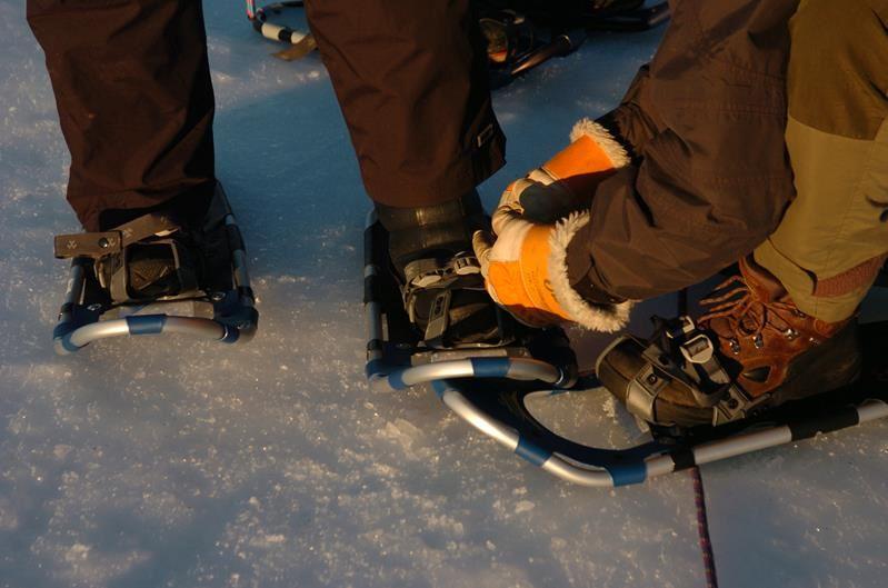 © Kåre Tannvik, Kirkenes Snowhotel Trugetur 2 timer