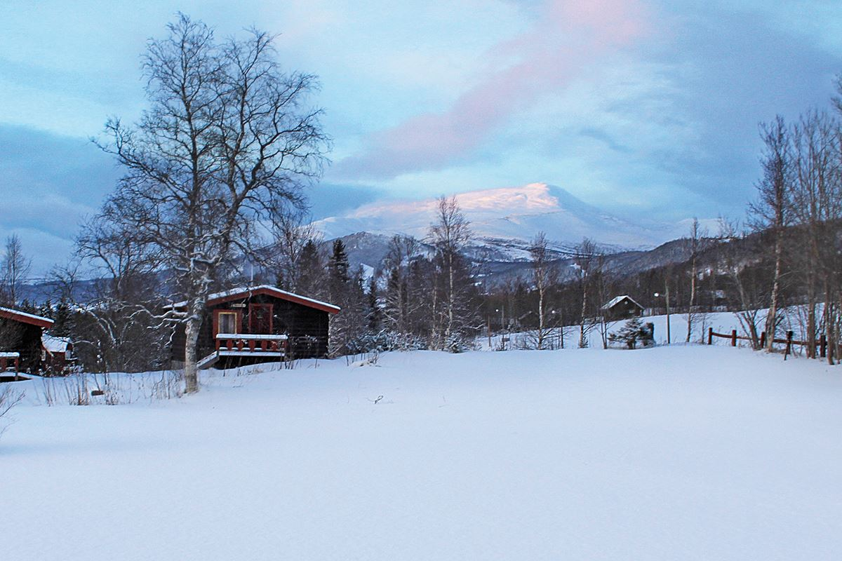 Åre Camping /Cabins