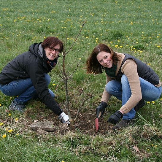 Course in Truffle Cultivation