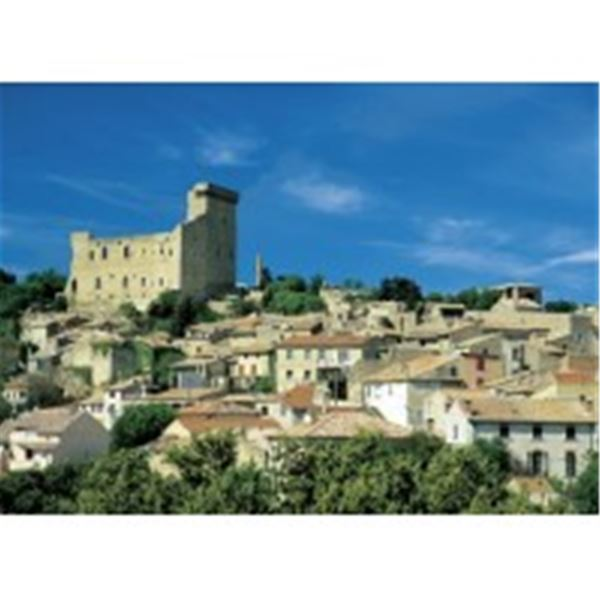 Excursion Gigondas et Chateauneuf du Pape Wine Tour