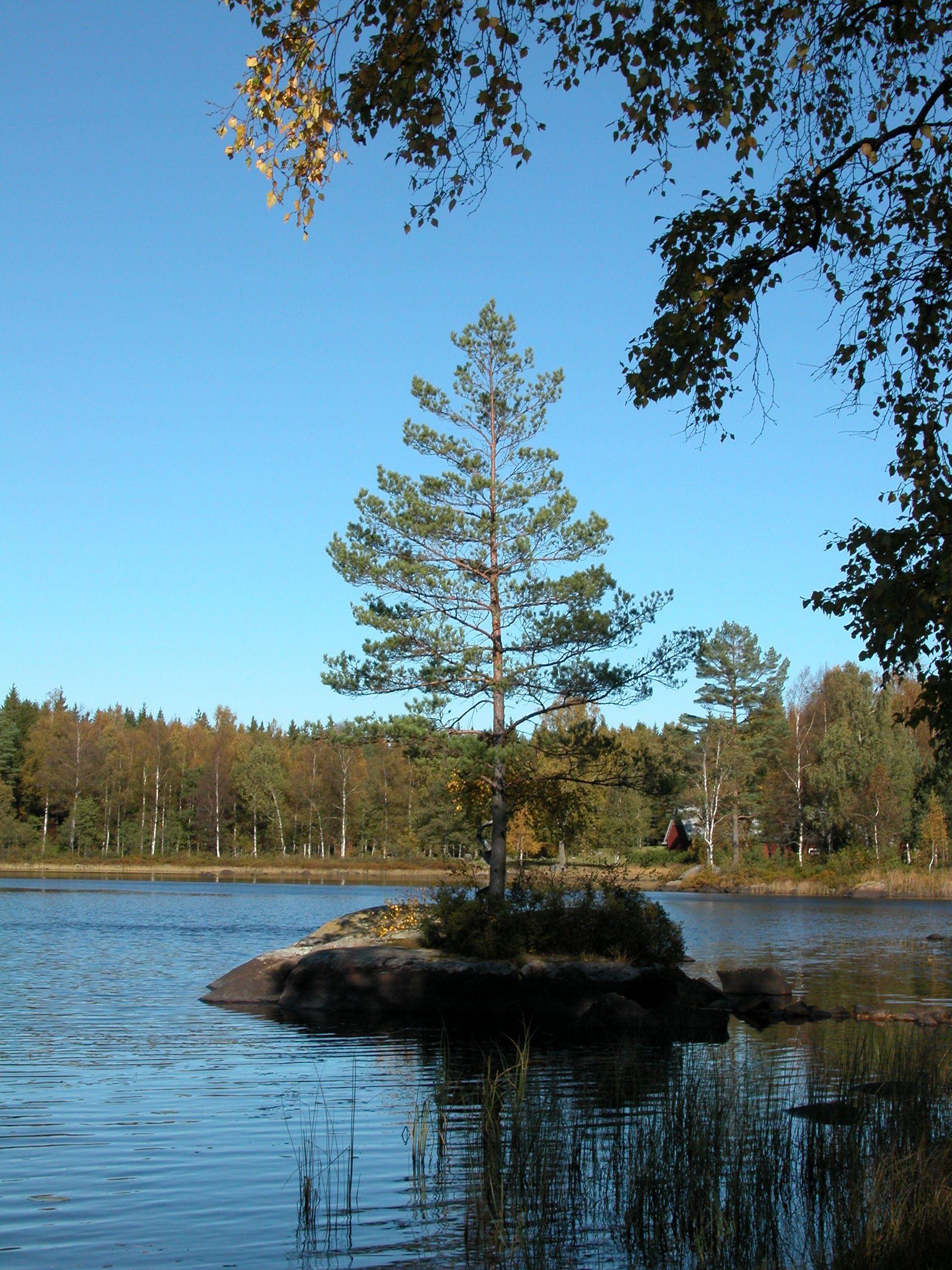 Per Olof Peterson, Iglasjö See