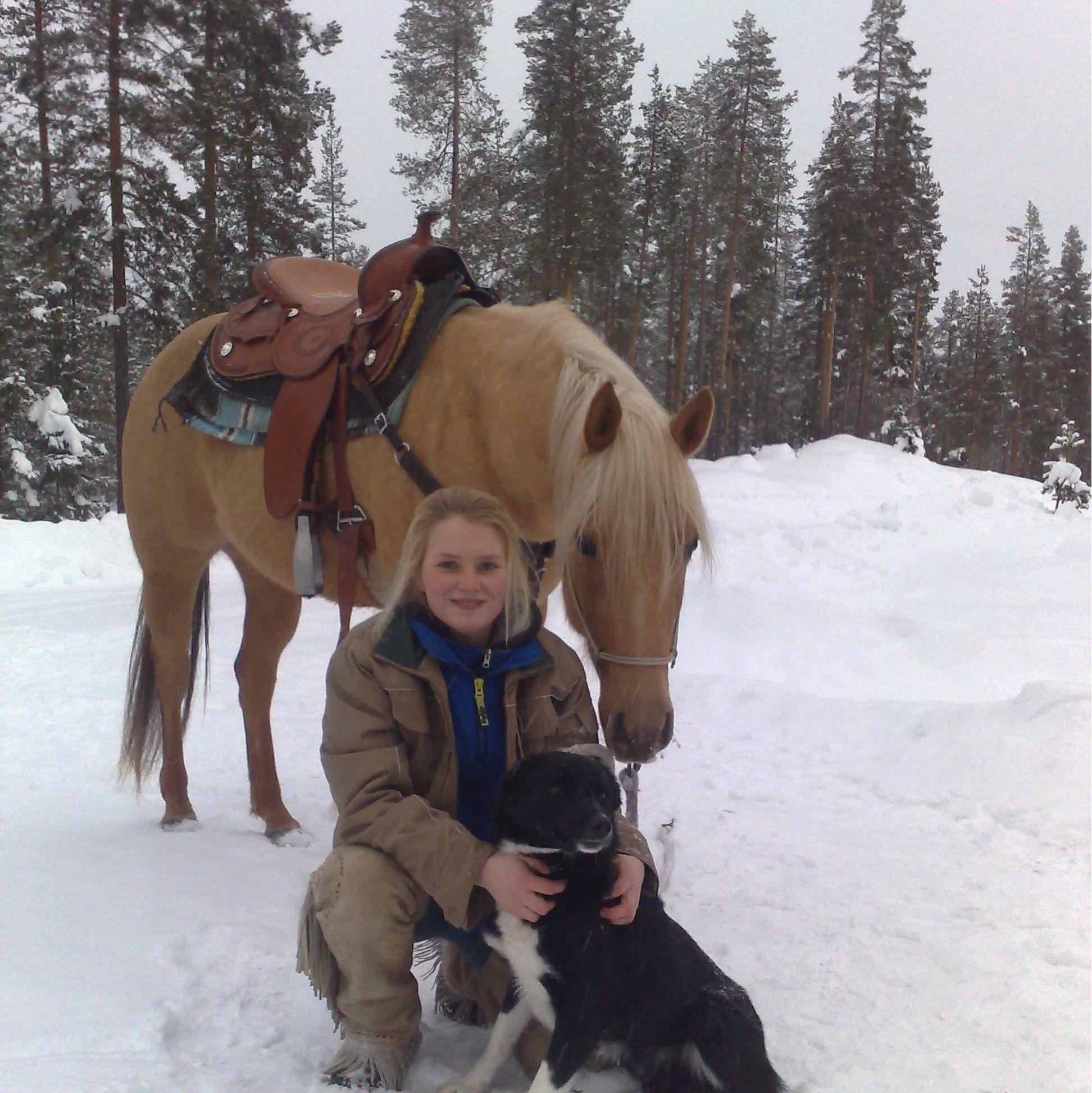 Foto: www.heroshastar.se, Heros Horses - Rörbäcksnäs