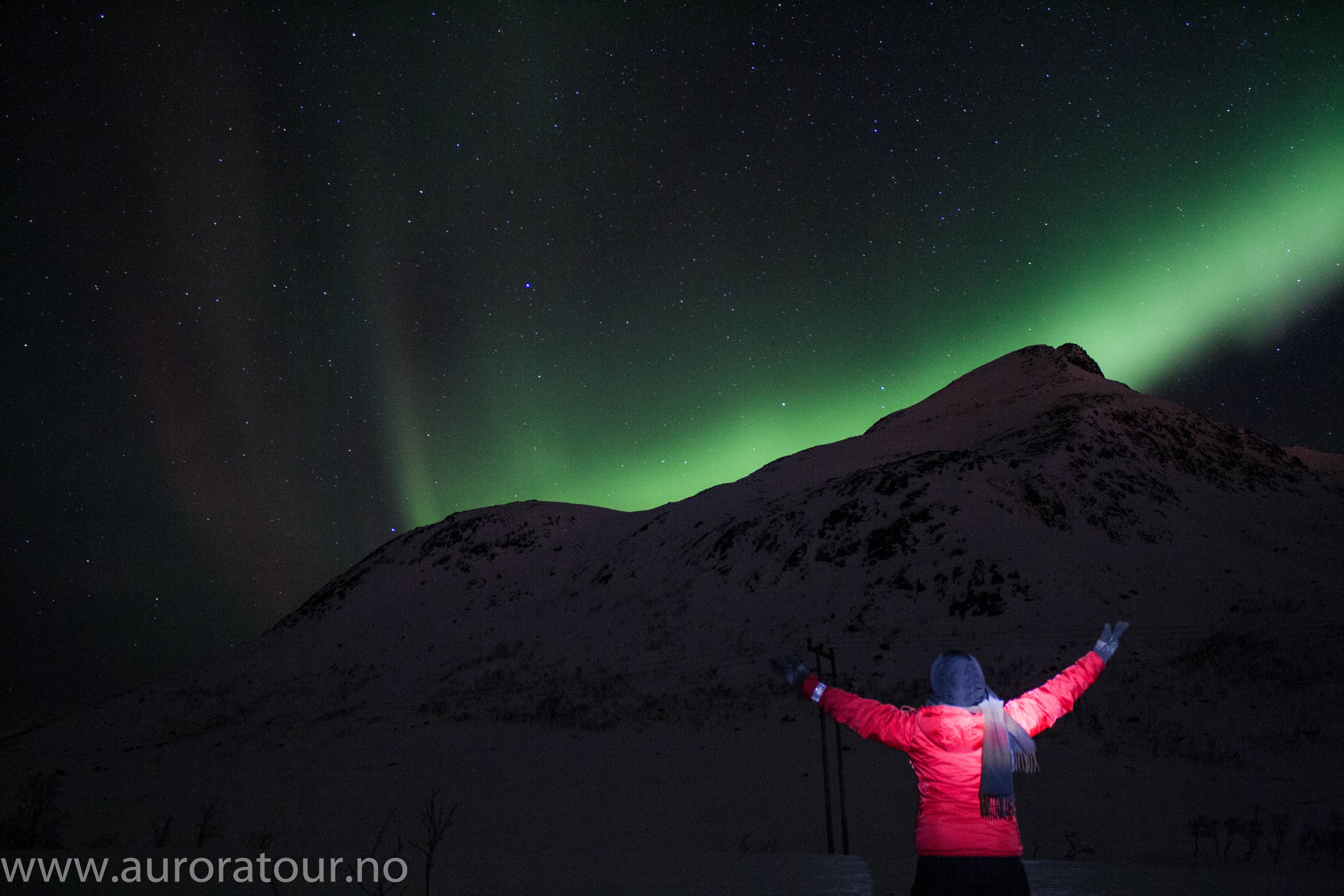 Aurora Tour - Your Northern Lights Guide in Tromsø