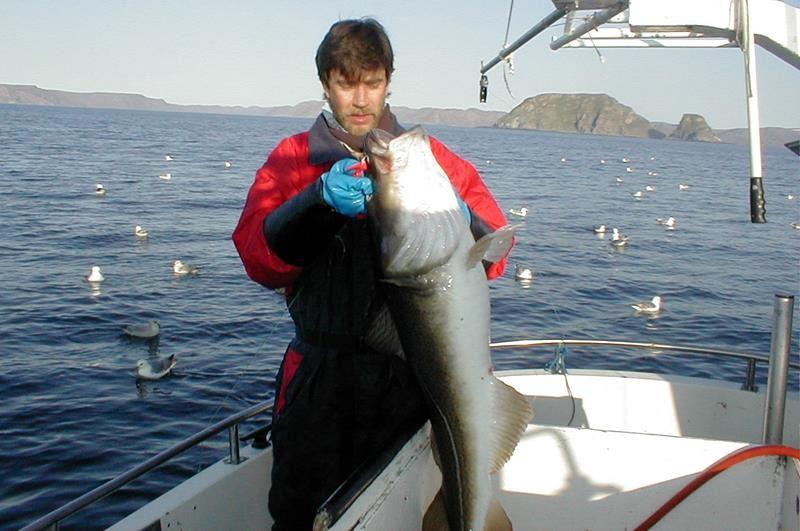 Havfiske - Nordkapp