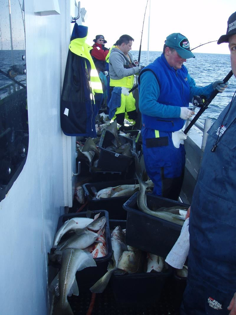 © Sørøya Havfiskecruise AS, Havfiske på Sørøya