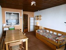 LE SERAC 214 / 2 rooms 6 people