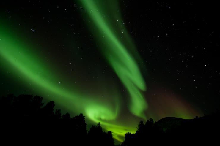 Northern Light Safari- by Turgleder