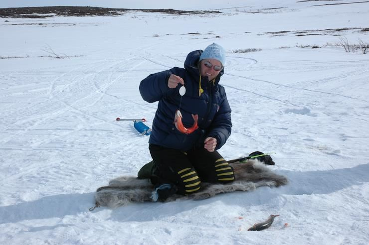 © Turgleder, Finnmark Plateau Skiing Holiday