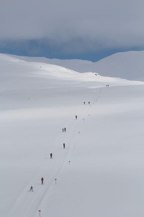 1:8 Paket Tur/Längd skidor