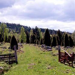 Föllingsö odlingslandskap