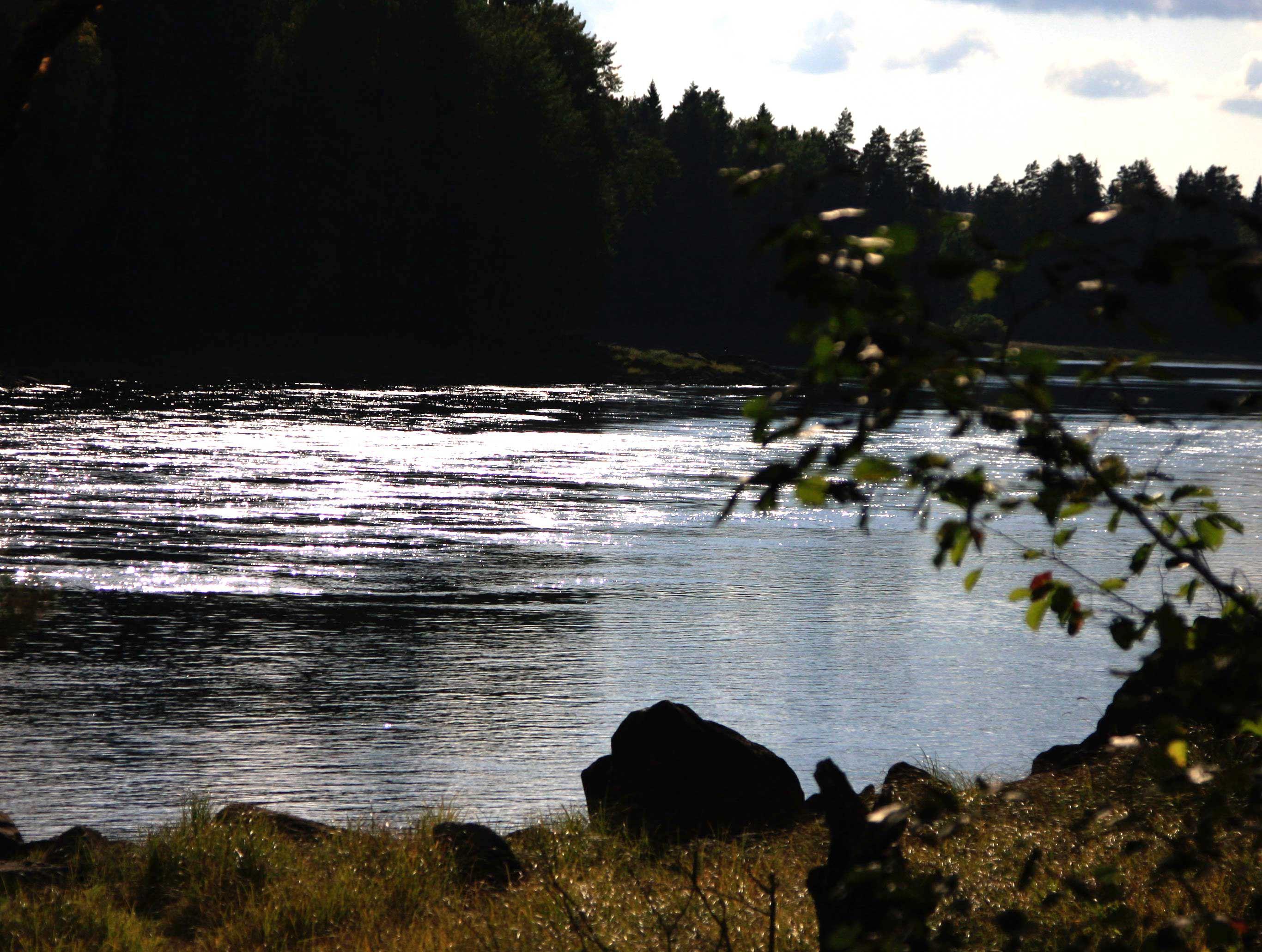 Tyttbo Rapids