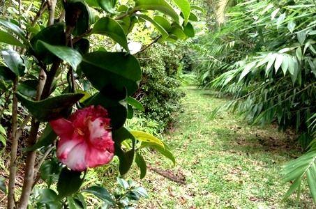 Garten Jardin des Affouches