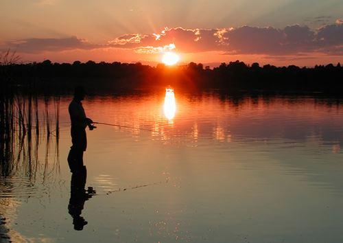 Fiske i Åmot
