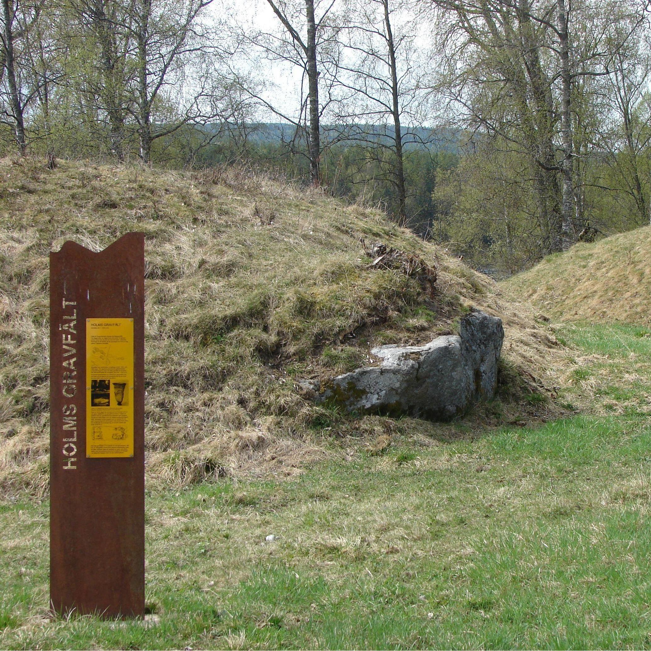 Foto. Elisabeth Sellgren, The burial mounds in Holm and Björkå