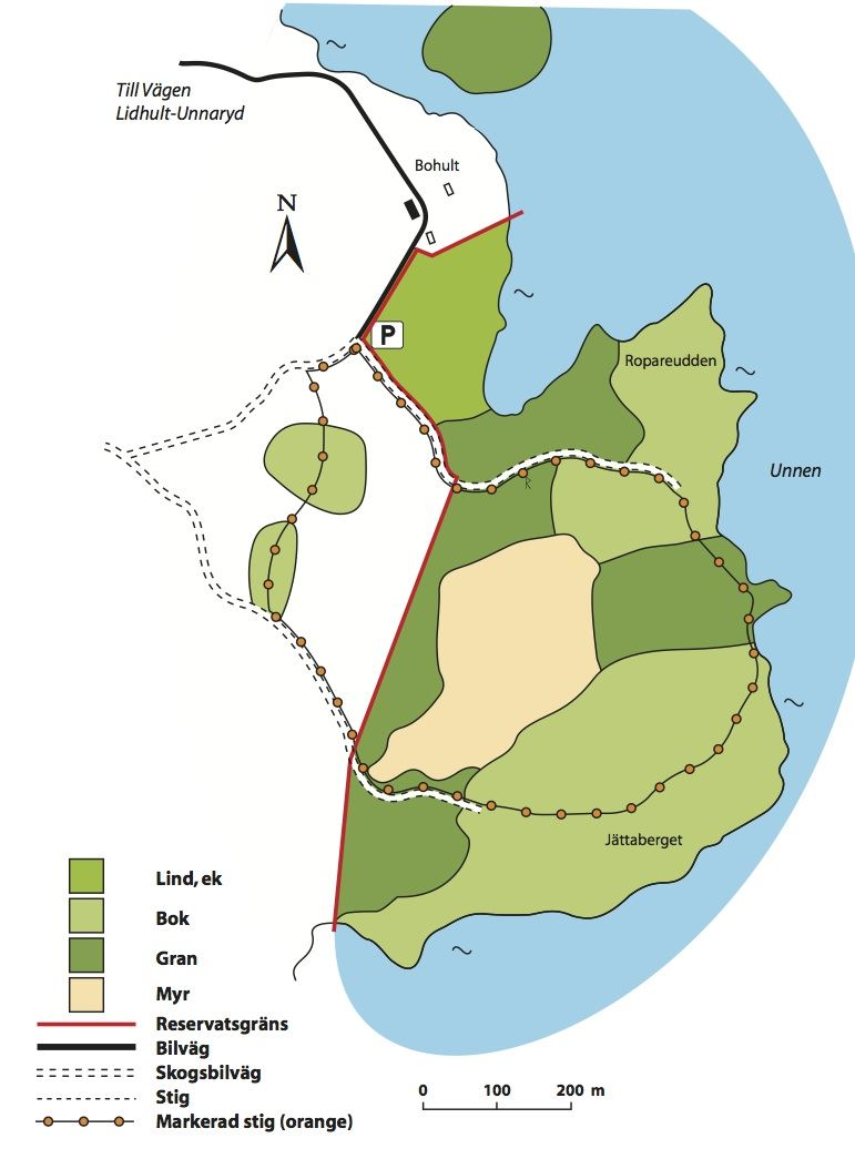 © Länsstyrelsen Kronobergs län, Jättaberget Naturschutzgebiet
