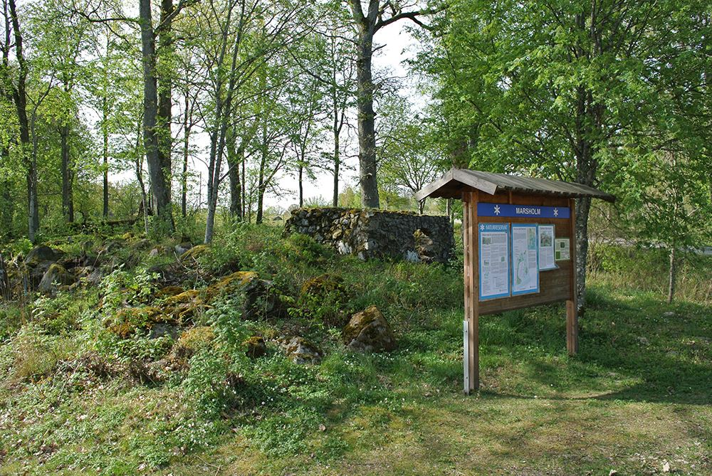 Nature Reserve Marsholm