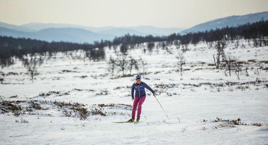 Mikaelas Ski School - technique training skate