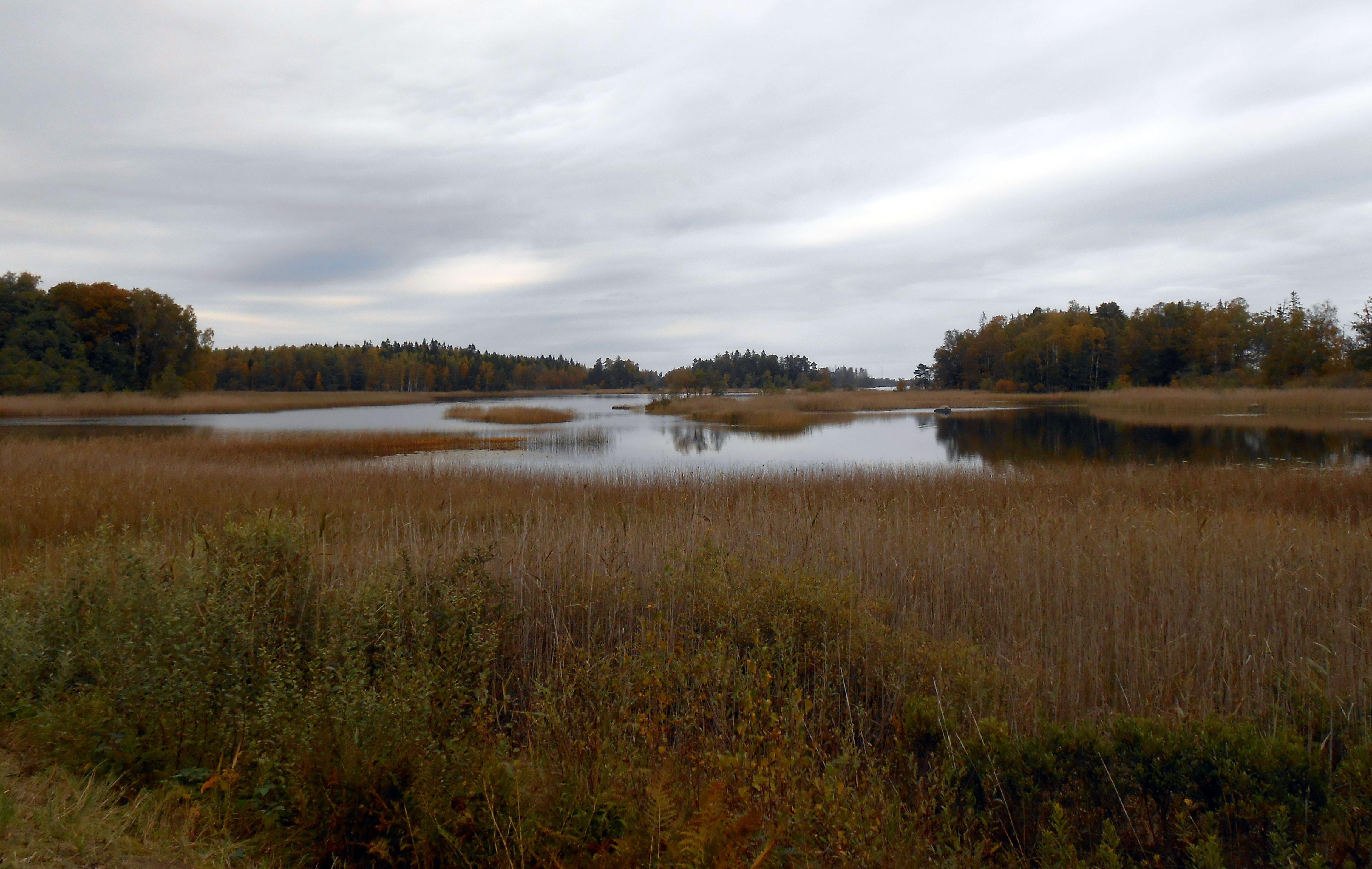 Nature reserve Hunshult
