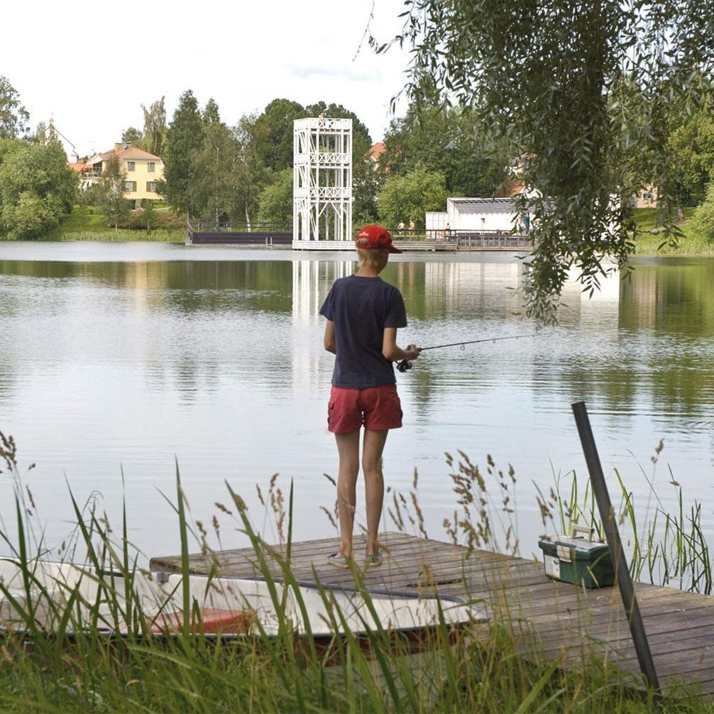 Fiske i Husby-Hedemora Fiskevårdsområde