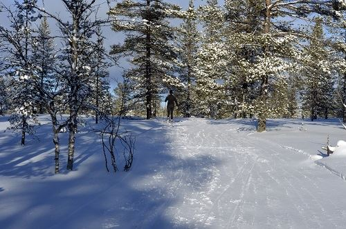 Längdspår Nornäs