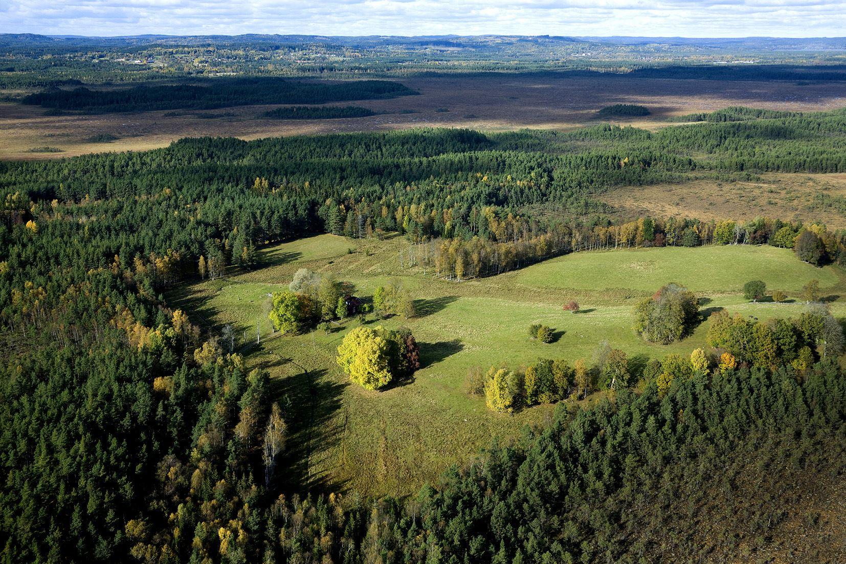 Sveriges nationalparker med Johan Rova