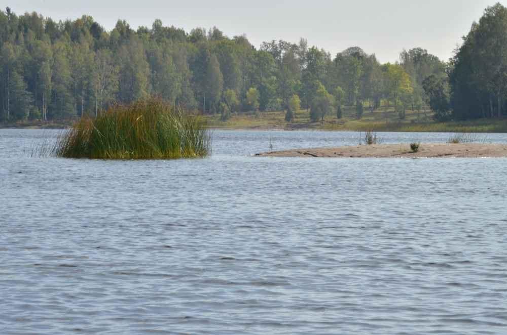 © SV, Svanfjorden (Nedre Upperudsälvens Fischpfelgegebiet)