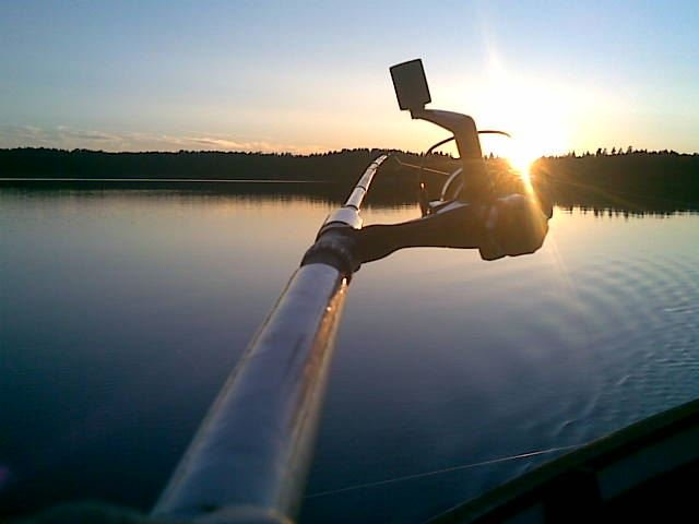 © SV, Dalsjön (Nedre Upperudsälvens Fischpflegeverein)
