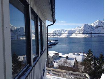 Arctic course