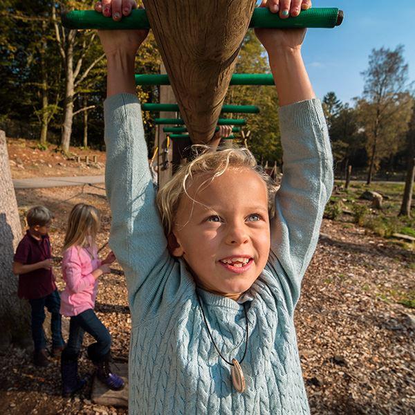 Camp Oak - Skånes Djurpark (Tält-2-6 pers)
