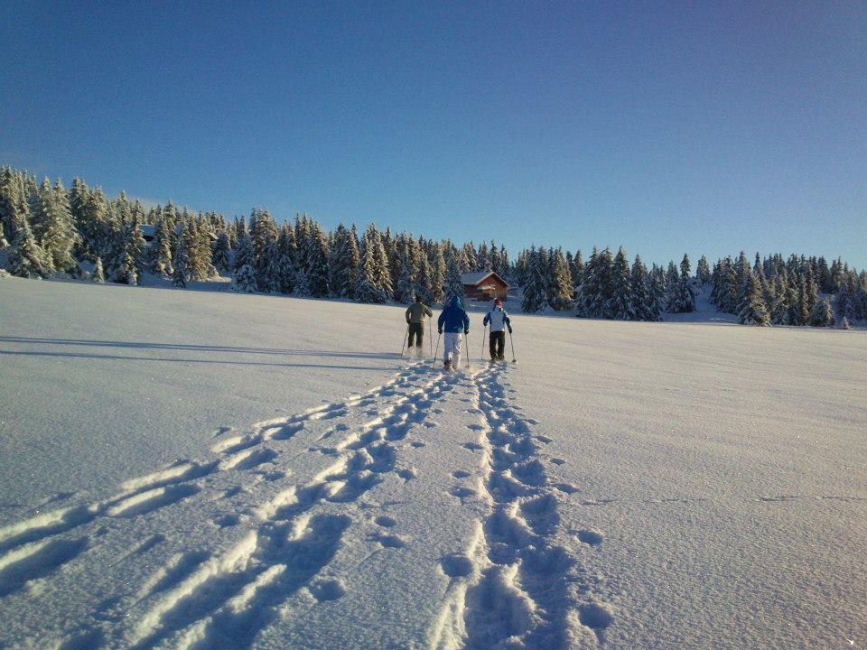 Snowshoe safari in Hafjell