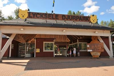 Gift voucher Lycksele Zoo