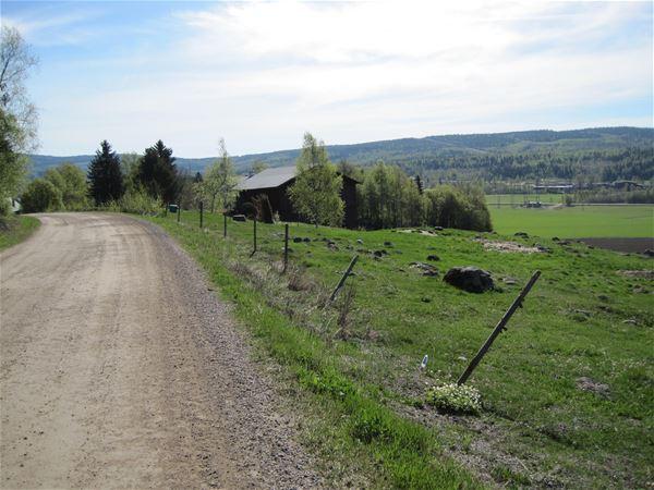 S:t Olavsleden (Pilgerweg)