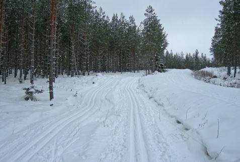 Bergebo friluftsområde