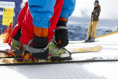 Rent snowboards, cross-country and telemark equipment