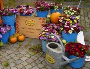 Fresons Bageri & Trädgård