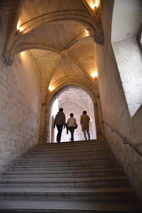 Visite du Palais des Papes + Exposition Les Eclaireurs