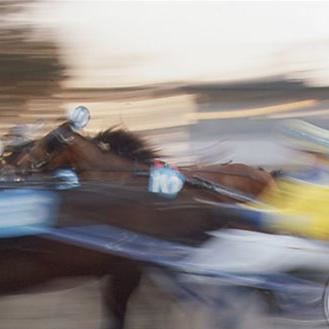 Foto: Tommy Andersson,  © Copy: Tommy Andersson, Trotting race